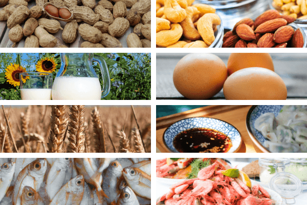 8 Common food allergens you find worldwide, including South Africa