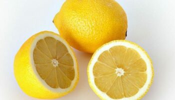5 Interesting Facts About Lemons
